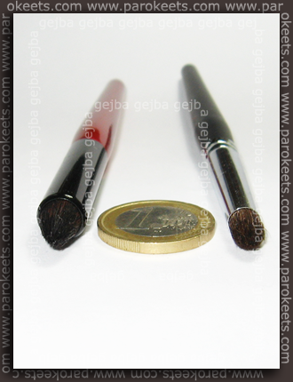 Coastal Scents Sable Contour and Kent Definition/socket brush