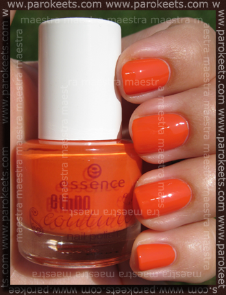 Essence - Ethno Couture Trend Edition - Ayada