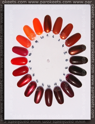 Nail Color Wheel