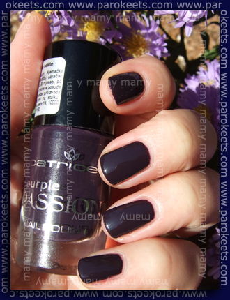 Catrice_Trend_Collection_Purple_Passion_Deep_Purple