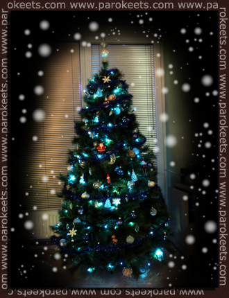Božično drevo