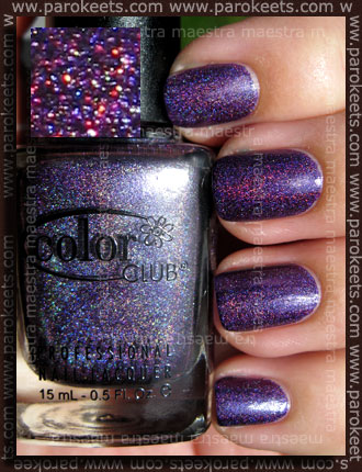 Color Club - Wild At Heart