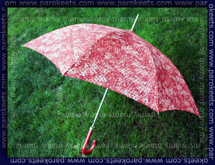 Deznik, Umbrella