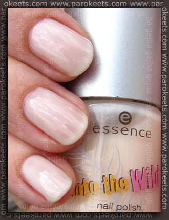 Essence Into The Wild - Bongo Drums swatch