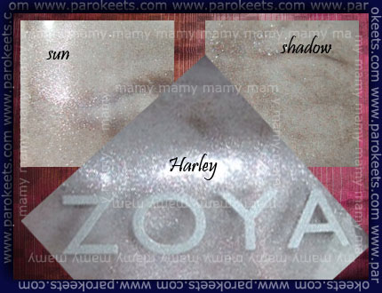 Zoya: Harley, bottles, sun/shadow