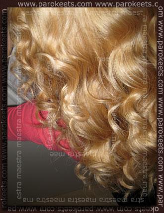 Maestra's hair