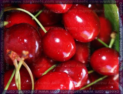 Češnje, Cherries