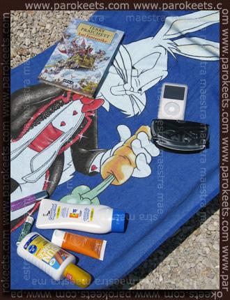 Maestra's summer vacation - day 2