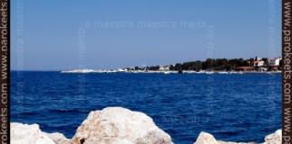Maestra's summer vacation - day 3 - trip to Novalja