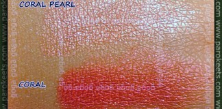 Coral Pearl, Coral swatch