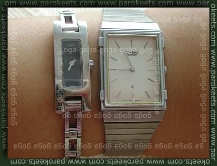Gucci, Casio watch