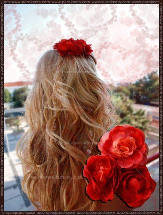 H&M flowers in my hair