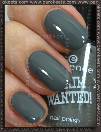 Essence (Denim Wanted): Fivepocket Grey swatch