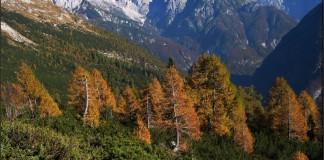 Jesen v gorah