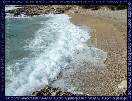 Plaza_Beach