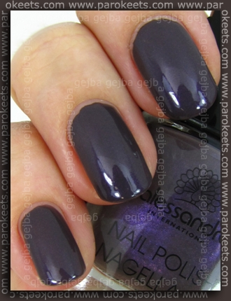 Alessandro - Hypnotic swatch