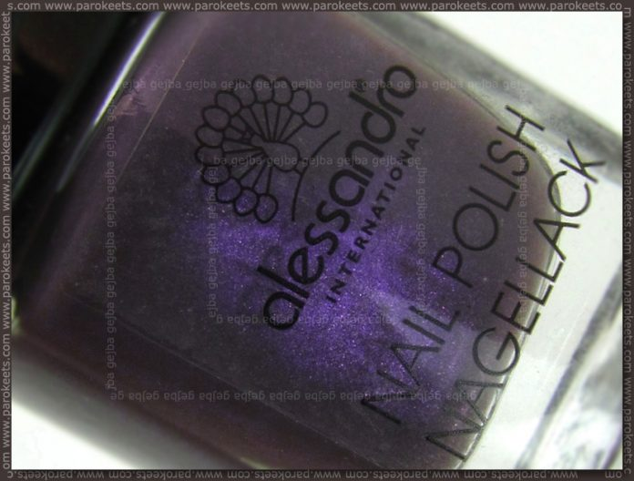 Alessandro - Hypnotic bottle