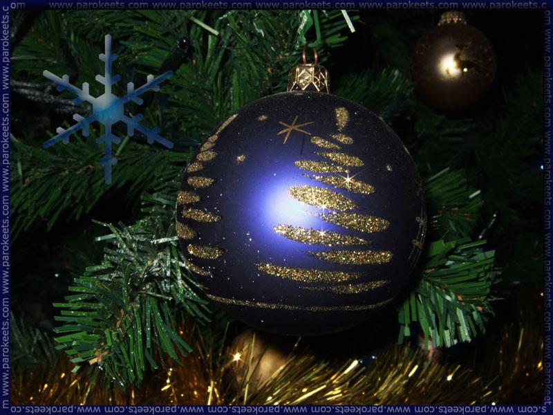 Bozic_Christmas