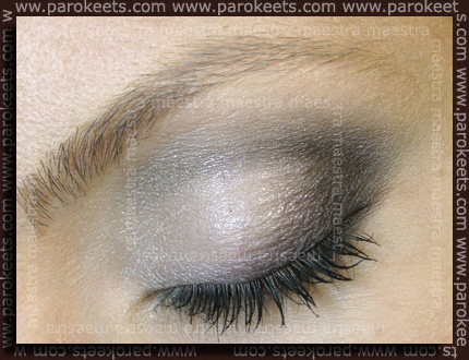 Black and Silver make up by Maestra