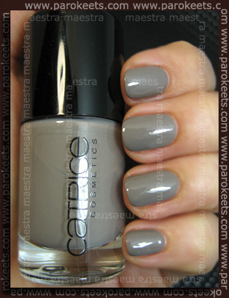 Swatch: Catrice - Absolutely Chinchilly