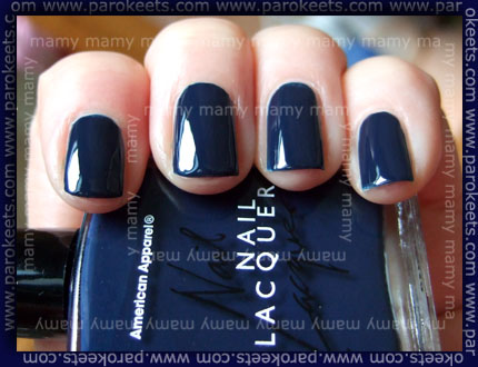 American_Apparel_Passport_Blue_Swatch