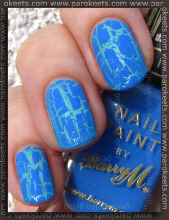 Deborah Shine Tech 55 + Barry M Blue Print swatch