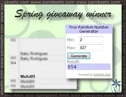 Parokeets blog: Spring giveaway 2011 winner