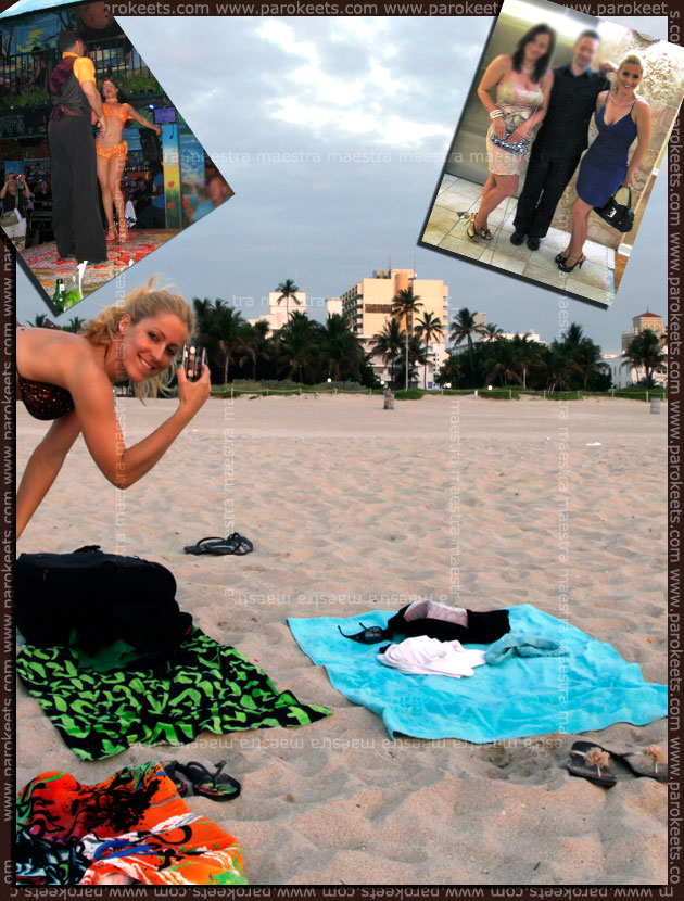 Adventures of a Beauty UK Earth Child palette: South Beach, Miami