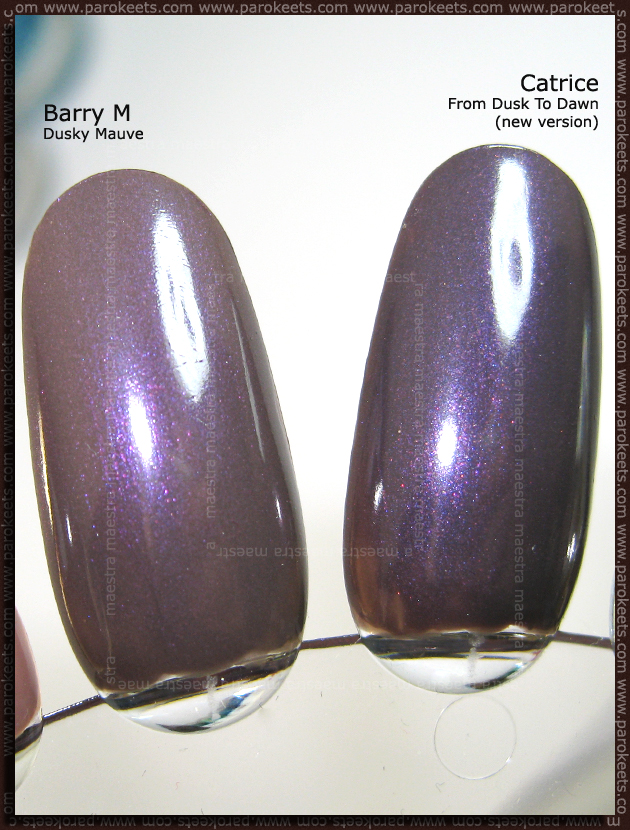 Comparison: Barry M - Dusky Mauve vs. Catrice - From Dusk To Dawn