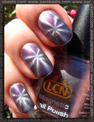 LCN Magnetic - Amazing Mauve swatch by Parokeets