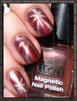 LCN Magnetic - Copper Seduction swatch by Parokeets