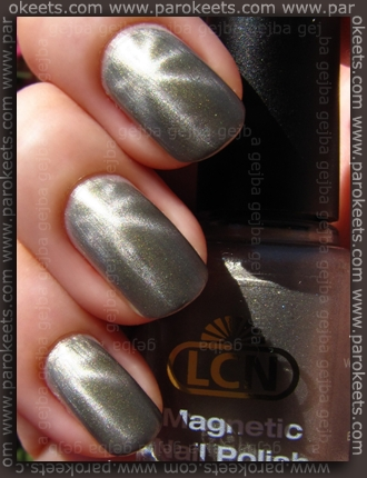 LCN Magnetic - Magnetic Moments swatch by Parokeets