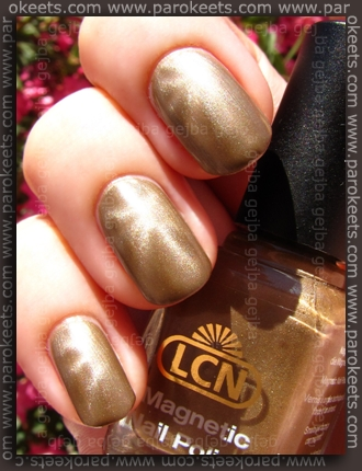 LCN Magnetic - Nude Charm swatch by Parokeets