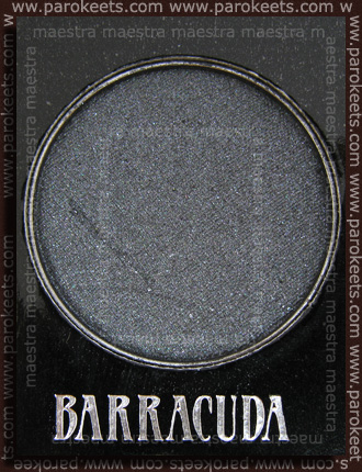 Urban Decay - The Black Palette: Barracuda