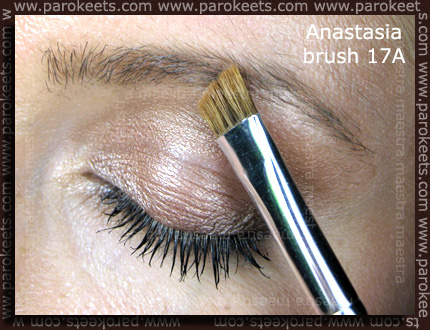 Anastasia Beverly Hills 17A brush