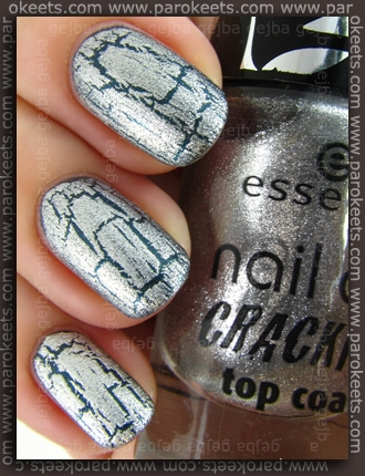 Essence: In Style + Crack Me! Silver swatch by Parokeets