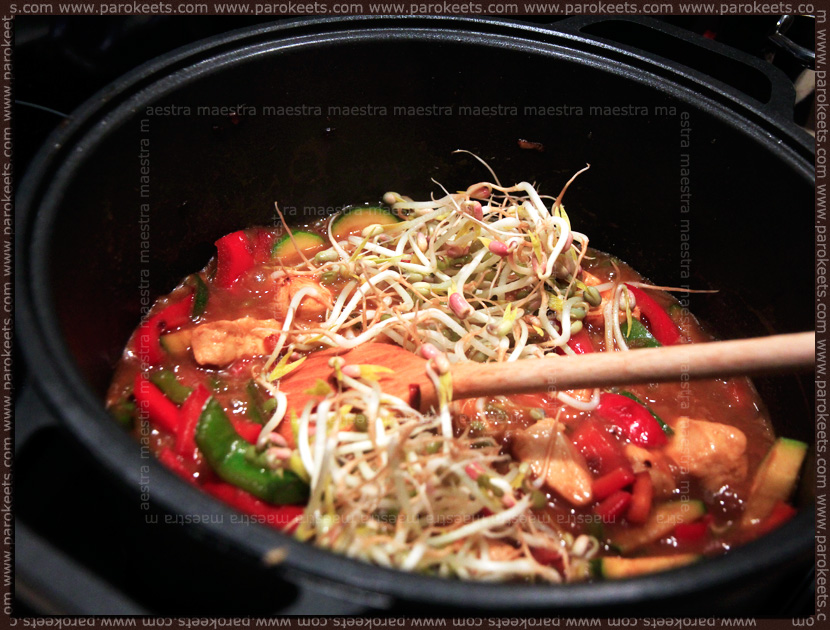 Maestra in the kitchen: Chinese food with home-grown Bean Sprouts