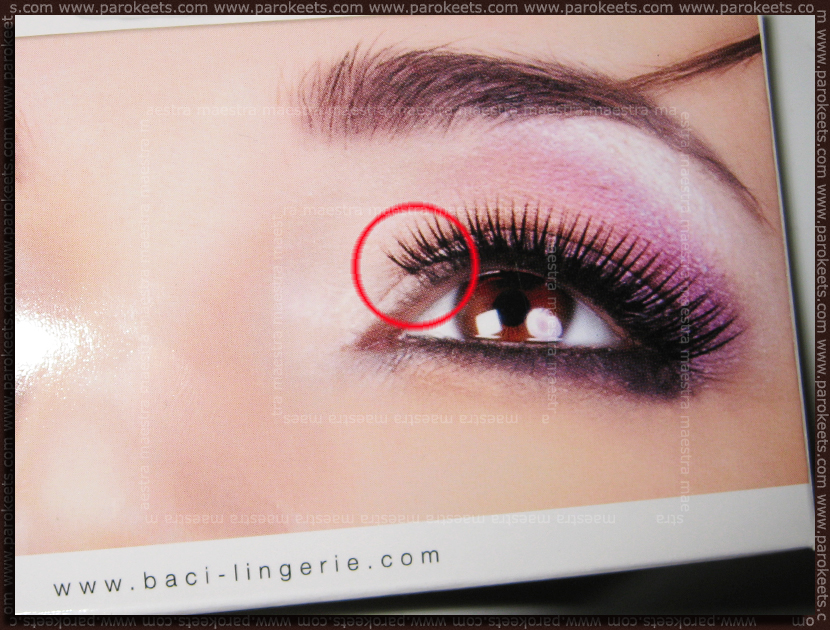 Baci lingerie false eye lashes