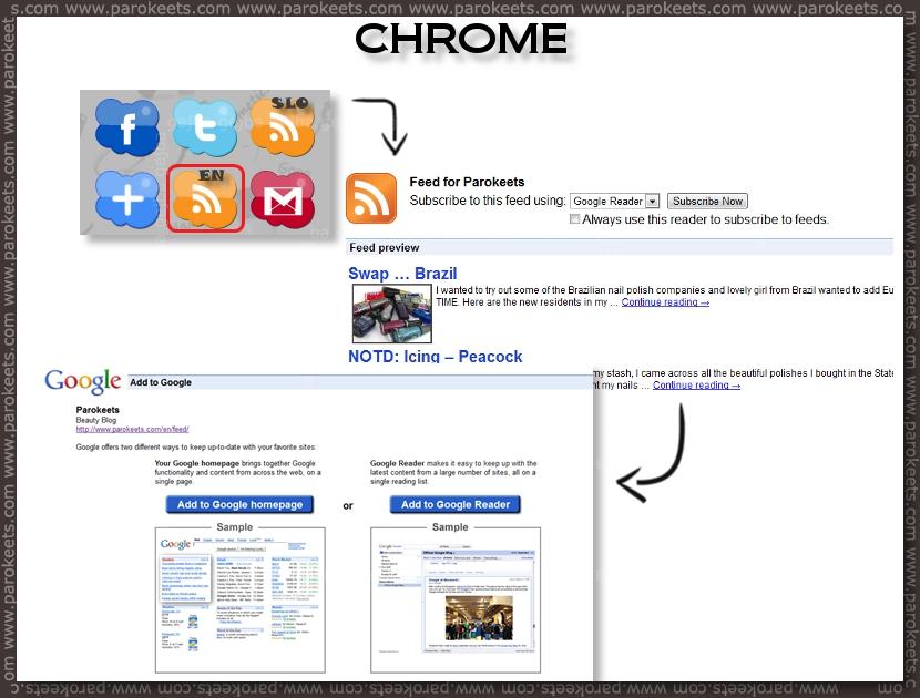Parokeets blog RSS - Chrome