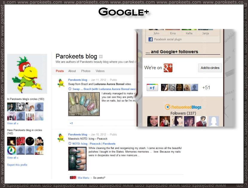 Parokeets blog RSS - Google plus