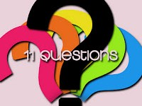 11 questions tag