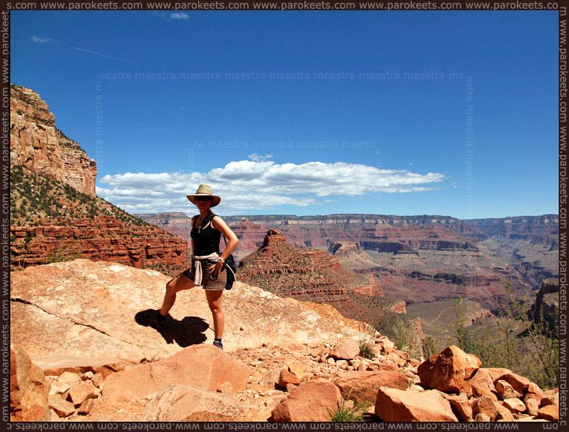 USA 2012: Grand Canyon