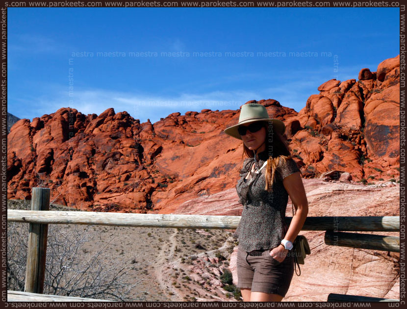 USA 2012: Red Rock Canyon