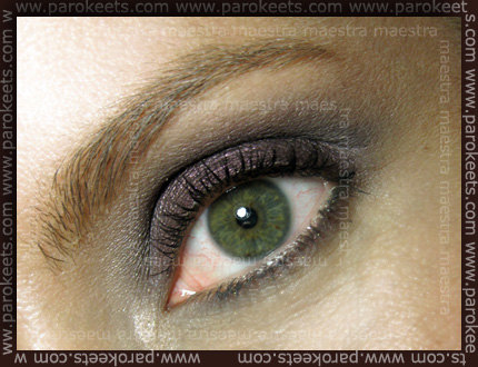 Make up by Maestra: Smokey Eyes with MAC Rich Core