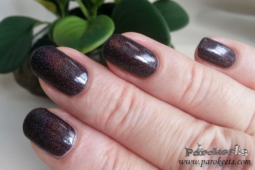Colour Alike 500 holo nail polish