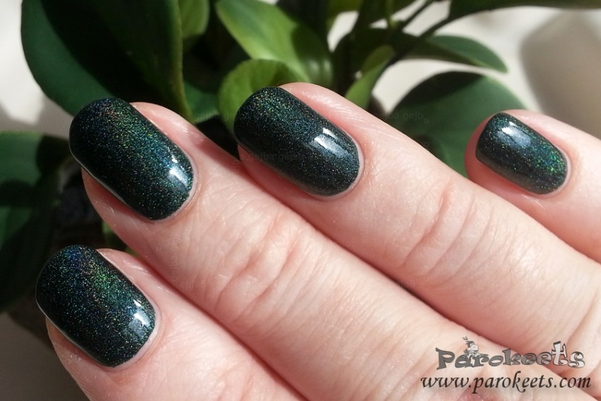 Colour Alike 501 holo nail polish