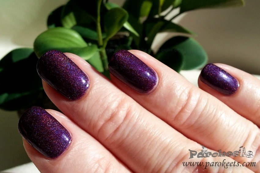 Colour Alike 502 holo nail polish