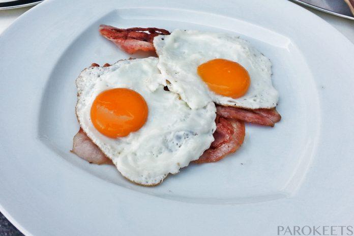 Plato Ljubljana zajtrk jajca slanina